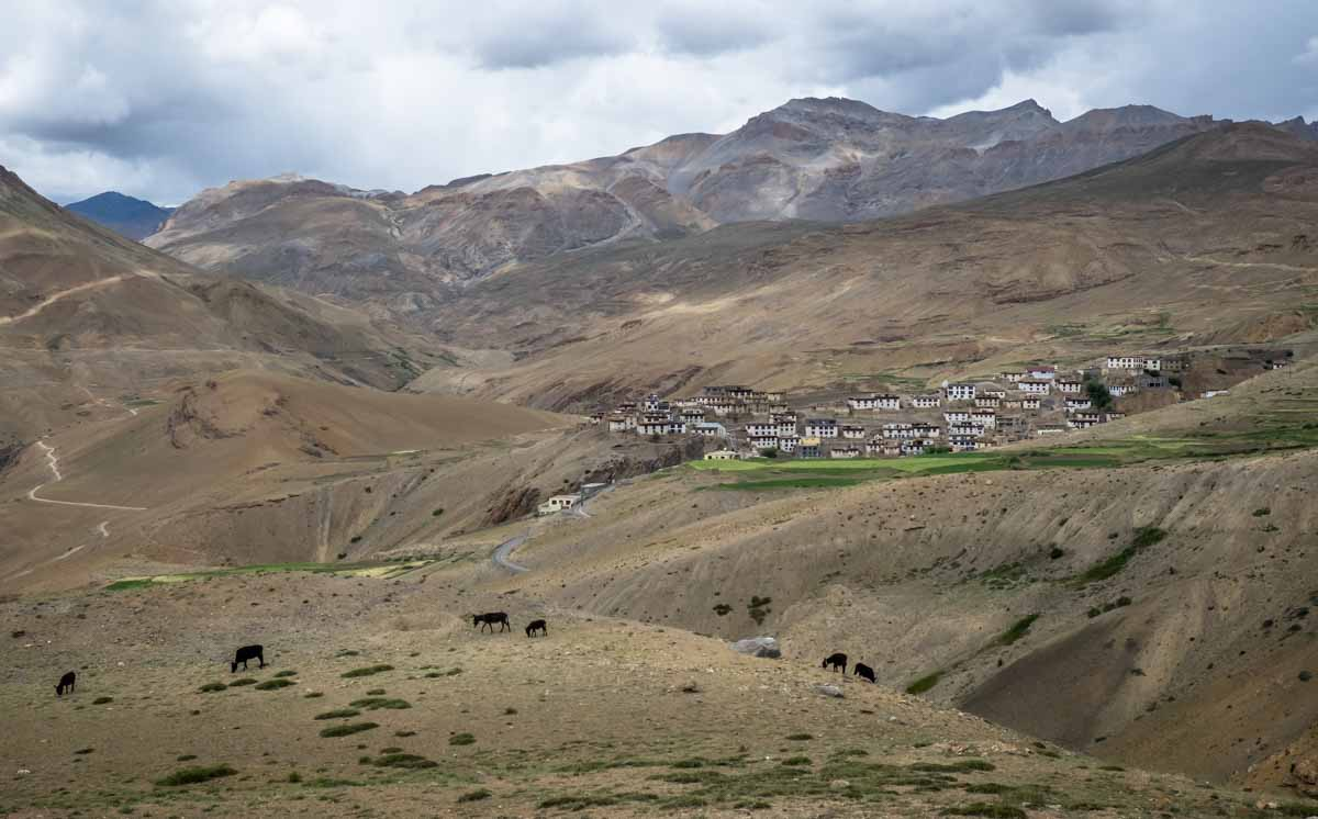 Kibber in Spiti valley, a hill station in north India