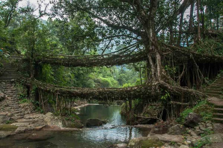 places_to_visit_in_northeast_India_itinerary